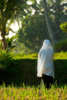 Evening Prayers Photo: A devout muslim breaks from her work in the rice fields to pray facing west towards Mecca.