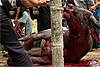 Struggle (Funeral Ritual II) Photo: This christian area in Indonesia is famed for their elaborate funeral traditions.  Families save their entire lives to in order to pay for animals to slaughter when loved one dies.  It's not uncommon for a wealthy family to slaughter 50 water buffaloes and 100 pigs over the course of several days.  The meat is later distributed to local villagers.
